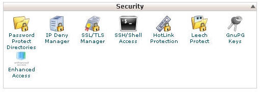 Screen Shot Of Enhanced Access Button In cPanel